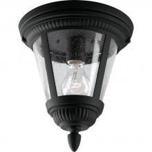 Progress P3883-31 - One Light Black Clear Seeded Glass Outdoor Flush Mount