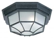 Capital Canada 9800BK - 2 Lamp Outdoor Ceiling Fixture