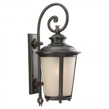 Sea Gull Canada 89343BLE-780 - One Light Outdoor Cape May ENERGY STAR Wall Lantern