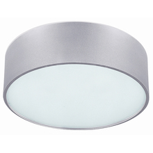 "Canarm IFM318A13AL - Dexter, IFM318A13AL, 2 Lt Flush Mount, Frosted Glass Diffuser, 60W Type A, 13 3/4"" W x 6 1/4&#34"