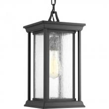 Progress P5500-31 - One-light hanging lantern