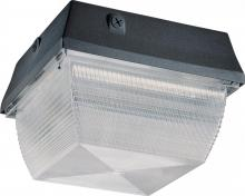 Nuvo 65/013 - Metal Halide Ceiling / Wallpack - 175w MH - Medium Base