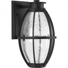 Progress P560034-031-30 - Pier 33 Collection One-Light LED Wall Lantern